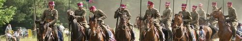 kielce echo świętokrzyskie kraina pięknych koni 2012