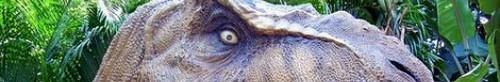 kielce echo miasta wiadomości dnia wystawa dinozurów korona