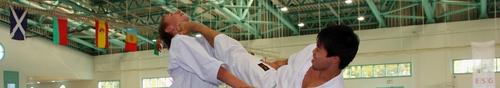kielce sport Mistrzostwa Europy Karate w Kielcach