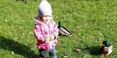 kielce wiadomości Pomóżmy małej Nikoli z Kielc