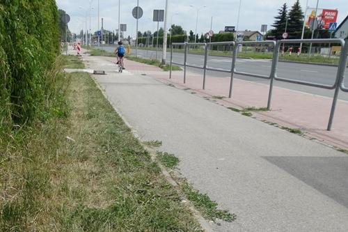 kielce wiadomości W Kielcach wybudują nowe drogi dla rowerów
