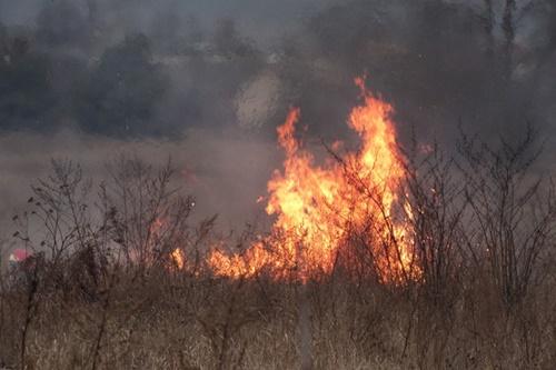 kielce wiadomości OSP z Bliżyna nie wyjadą do pożarów traw. Tak zdecydował wójt