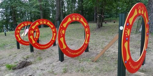kielce wiadomości Totalny odlot. W Kielcach powstaje plac zabaw dla psów (ZDJĘCI