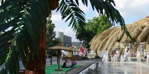 kielce wiadomości Kielce jak Hawaje. Plaża z palmami w centrum miasta (ZDJĘCIA)