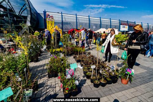 kielce wiadomości Wszystko do domu i ogrodu w Targach Kielce (ZDJĘCIA)