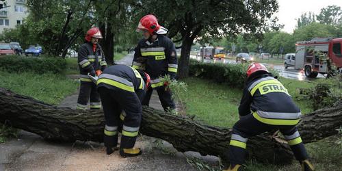 kielce wiadomości Strażacy usuwają skutki nocnej wichury