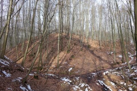 kielce wiadomości Czy w Zgórsku znajdują się ruiny średniowiecznej warowni? Szykują się ekscytujące badania