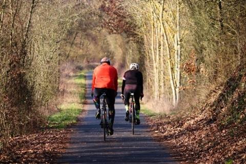 kielce wiadomości Nowe ścieżki rowerowe w regionie? Pracuje nad nimi specjalny zespół